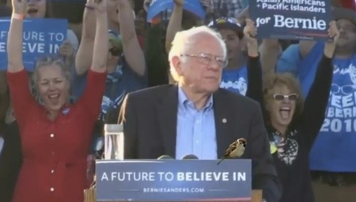 Watch LIVE Stream: Bernie Sanders At Albuquerque, New Mexico Rally