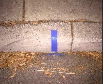 Notice A Blue Stripe On A Curb? It's A Viral Campaign To Show Support For Cops!