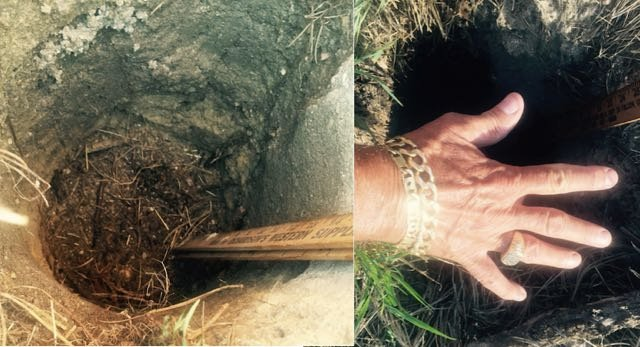 Mystery Hole Baffles Investigator: 'Appeared In My Yard Overnight!'