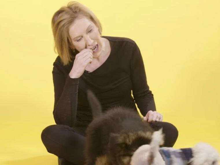 Video: Carly Fiorina Disses Cats, Chews Milk Bone & Accuses Obama Of Eating Dogs
