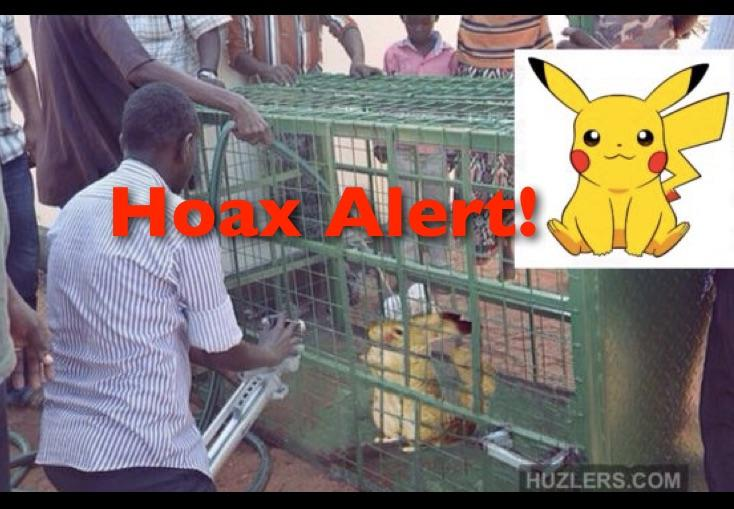 Hoax Alert: African Villagers Have NOT Captured a Real Life Pikachu Using Pokemon Go