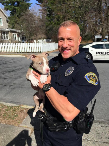 Awww! Cop Enters Burning House to Rescue Pit Bull Puppy