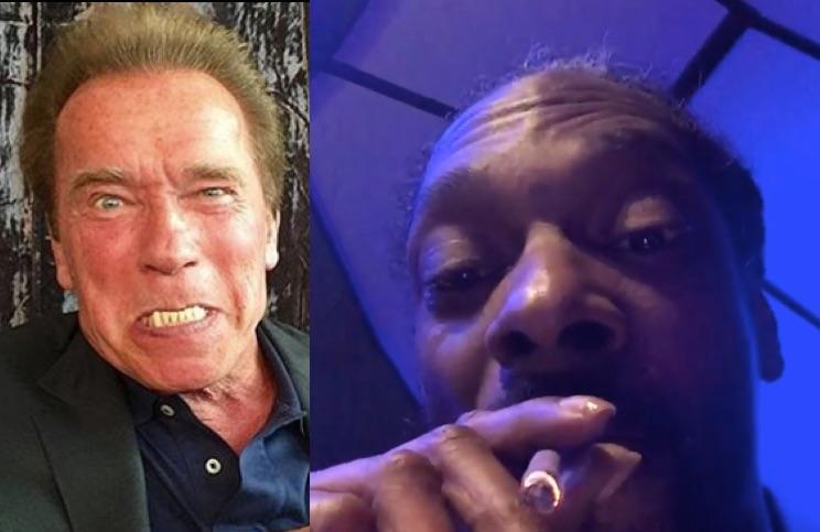 Snoop Dogg To Schwarzenegger: 'You'se A B*tch, You'se A Punk!'