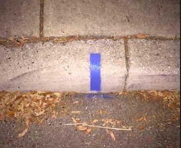 Blue curb stripe.jpg