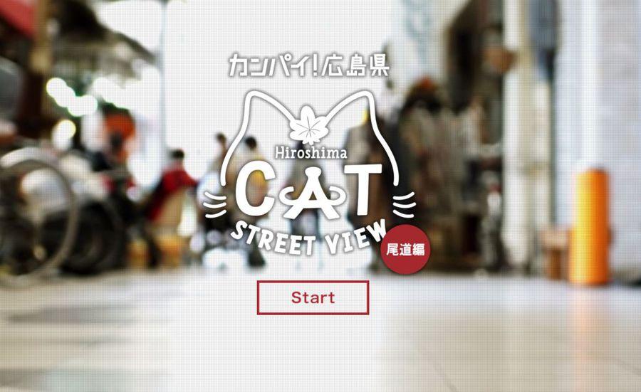 catstreetview.jpg
