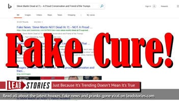 Fake News: Why We Do NOT Need To Put Onion On Our Feet Overnight