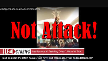 Fake News: Muslims Did NOT Attack Mall Christmas Tree