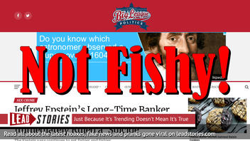 Fake News: Jeffrey Epstein Saga Does NOT Get Fishier And Fishier With Banker's Hanging Death