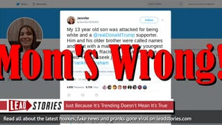 Fake News: 13-Year-Old Boy Was NOT Attacked For Being White And An @RealDonaldTrump Supporter