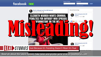 Fake News: Elizabeth Warren Does NOT Want Criminal Penalties For Anybody Who Spreads 'Disinformation' On The Internet