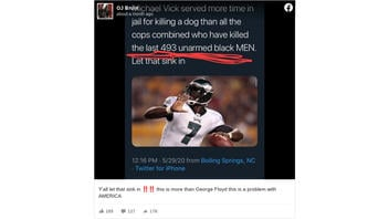 Fact Check: Michael Vick Did NOT Serve More Time In Jail For Killing A Dog Than All Cops Who Have Killed The Last 493 Unarmed Black Men