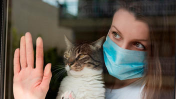 Fact Check: NO Proof Cat Owners May Have Higher Immunity Against COVID-19