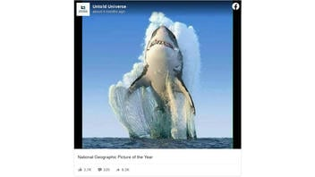 Fact Check: Image Is NOT One Of National Geographic's Photos Of The Year