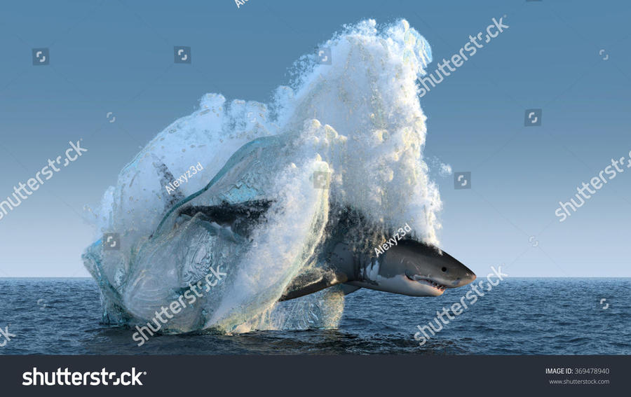 stock-photo-shark-jumps-out-of-the-water-369478940.jpg