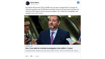 Fact Check: 'Kim Martin Morrow' Is NOT The CEO Of Netflix And Was NOT Charged With 15 Counts Of Child Pornography