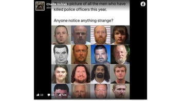 Fact Check: Meme Mugshots Do NOT Represent All Of The People Who Killed Police Officers This Year