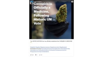 Fact Check: The United Nations Did NOT Classify Cannabis As A 'Medicine'