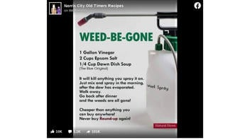 Fact Check: This Homemade Weed Killer Is NOT Proven To Perform As Claimed