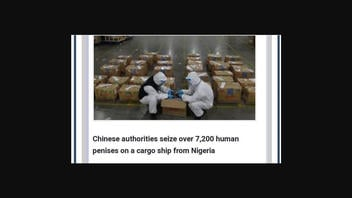 Fact Check: Chinese Authorities Did NOT Seize Over 7,200 Human Penises On Cargo Ship From Nigeria
