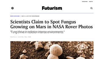 Fact Check: Scientists Did NOT Spot Mushrooms on Mars