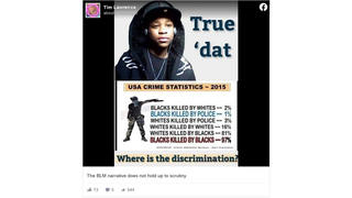 Fact Check: 2015 'USA Crime Statistics' Do NOT Show Correct Numbers For Killings By Race, Or For Police Killings Of Both Blacks And Whites