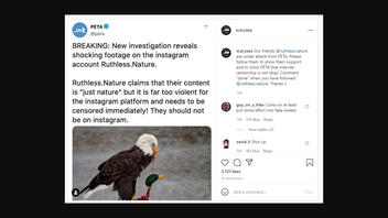 Fact Check: PETA Did NOT Call For Censorship of 'Ruthless.Nature' Instagram Page