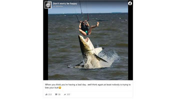 Fact Check: A Great White Shark Did NOT Try To Attack A Parasailer