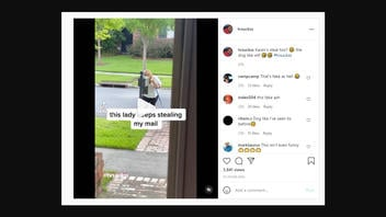 Fact Check: Mail-Stealing 'Karen' Video Is NOT Real -- It's Joke Made By TikTok Account