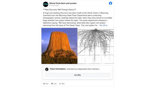 Fact Check: Devils Tower Does NOT Have A Massive Underground Root System