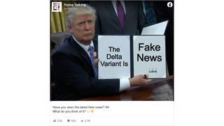 Fact Check: The Delta Variant Of The Novel Coronavirus Is NOT 'Fake News'
