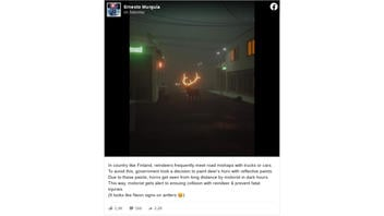 Fact Check: This Photo Does NOT Show A Real Reindeer With Glowing Antlers -- It's A Digital Artwork