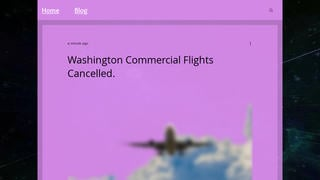 Fact Check: Washington, D.C., Commercial Flights Were NOT Canceled on October 11, 2021