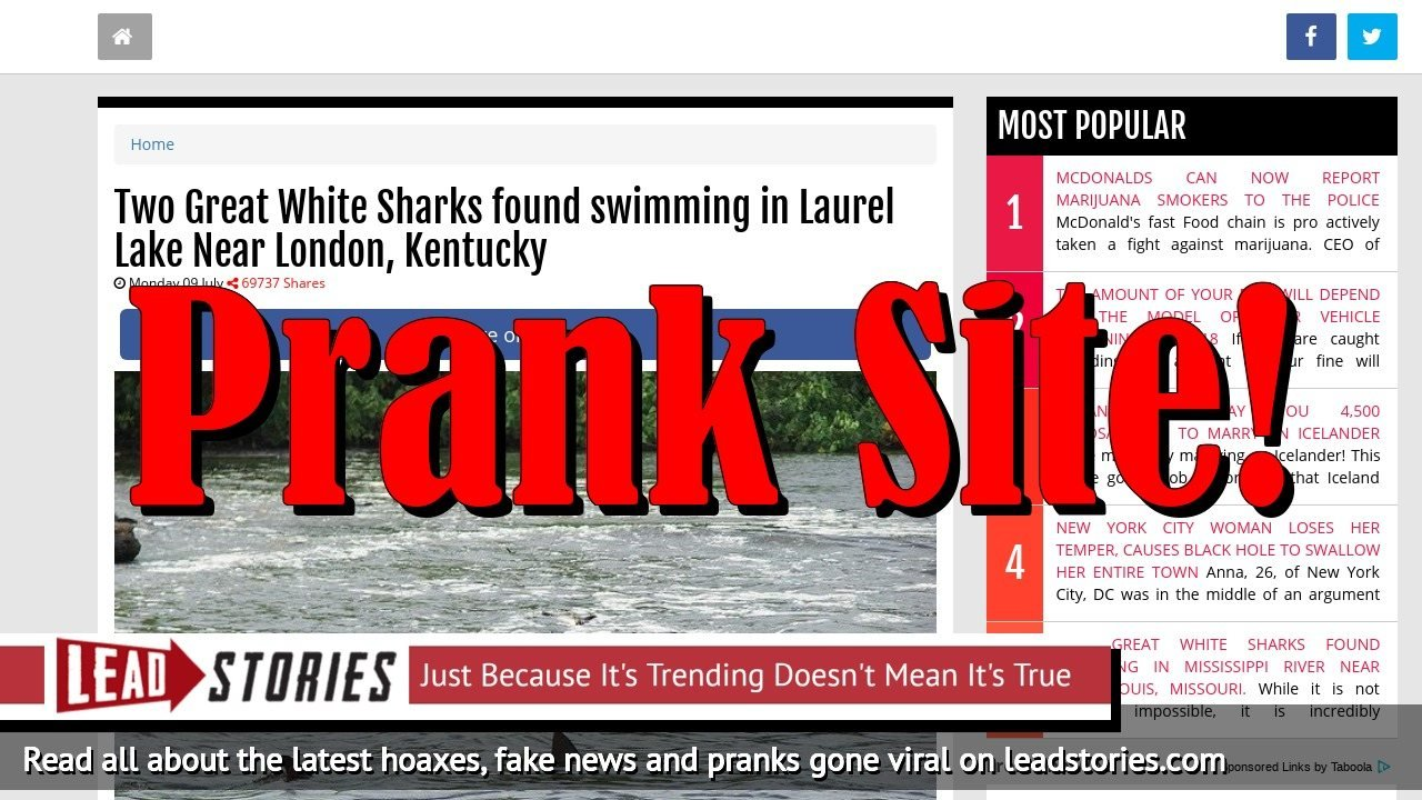 Screenshot of http://www.react365.com/5b4297b1bb35f/two-great-white-sharks-found-swimming-in-laurel-lake-near-london-kentucky.html