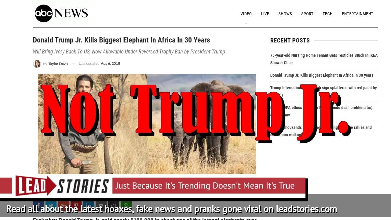 Screenshot of http://www.abcnews-us.com/2018/08/06/donald-trump-jr-kills-biggest-elephant-in-africa-in-30-years/