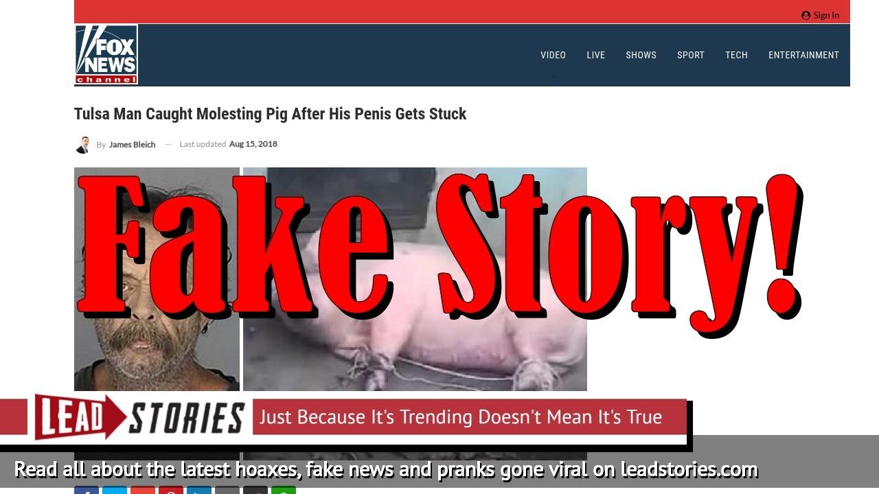 Screenshot of http://www.foxnews-us.com/2018/08/15/tulsa-man-caught-molesting-pig-after-his-penis-gets-stuck/