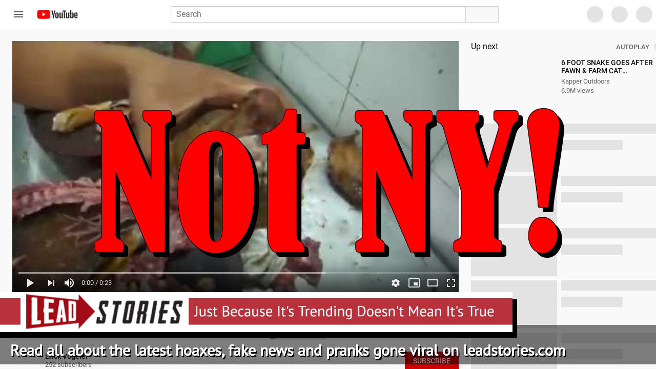 Fake News: New York Chinese Restaurants NOT Allowed To Sell Dog Meat