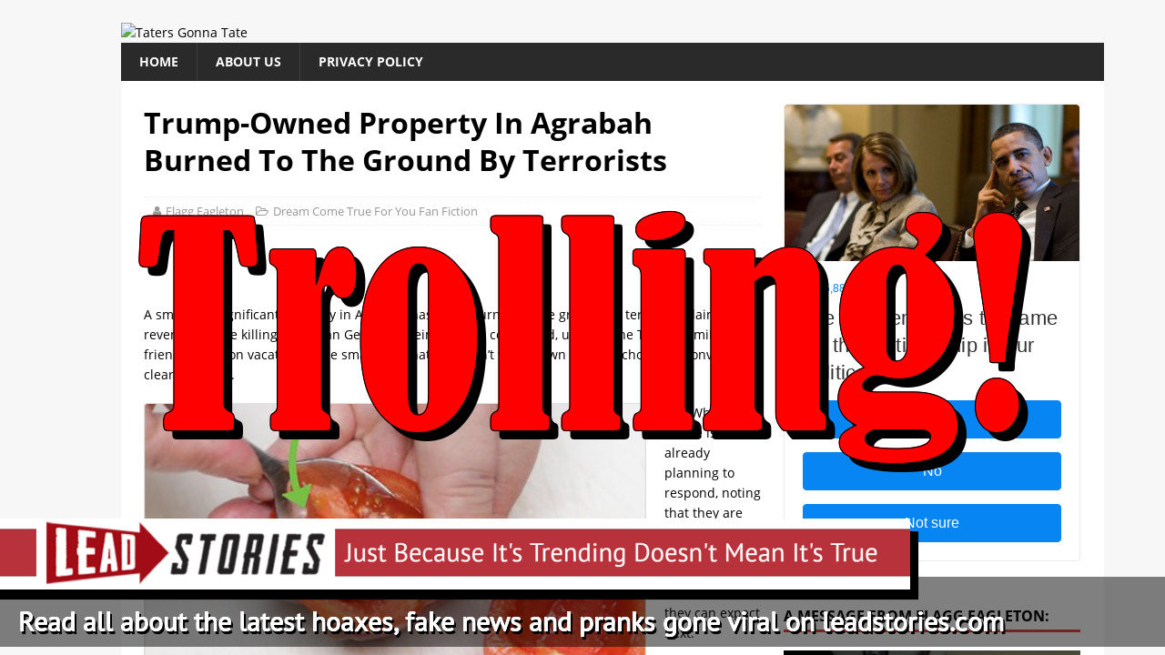Fake News: Trump-Owned Property In Agrabah NOT Burned To The Ground By Terrorists