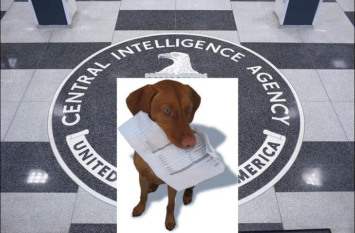 CIA: My Watchdog Ate My Torture Report -- Spy Agency Blames 'Inadvertent' Deletion On Inspector General
