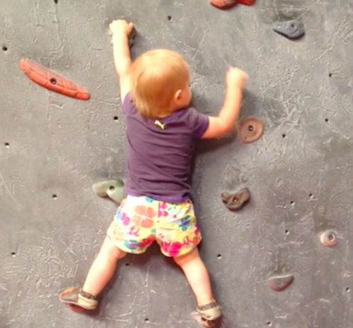 Oh, Look! A Trending Climbing Baby Video!