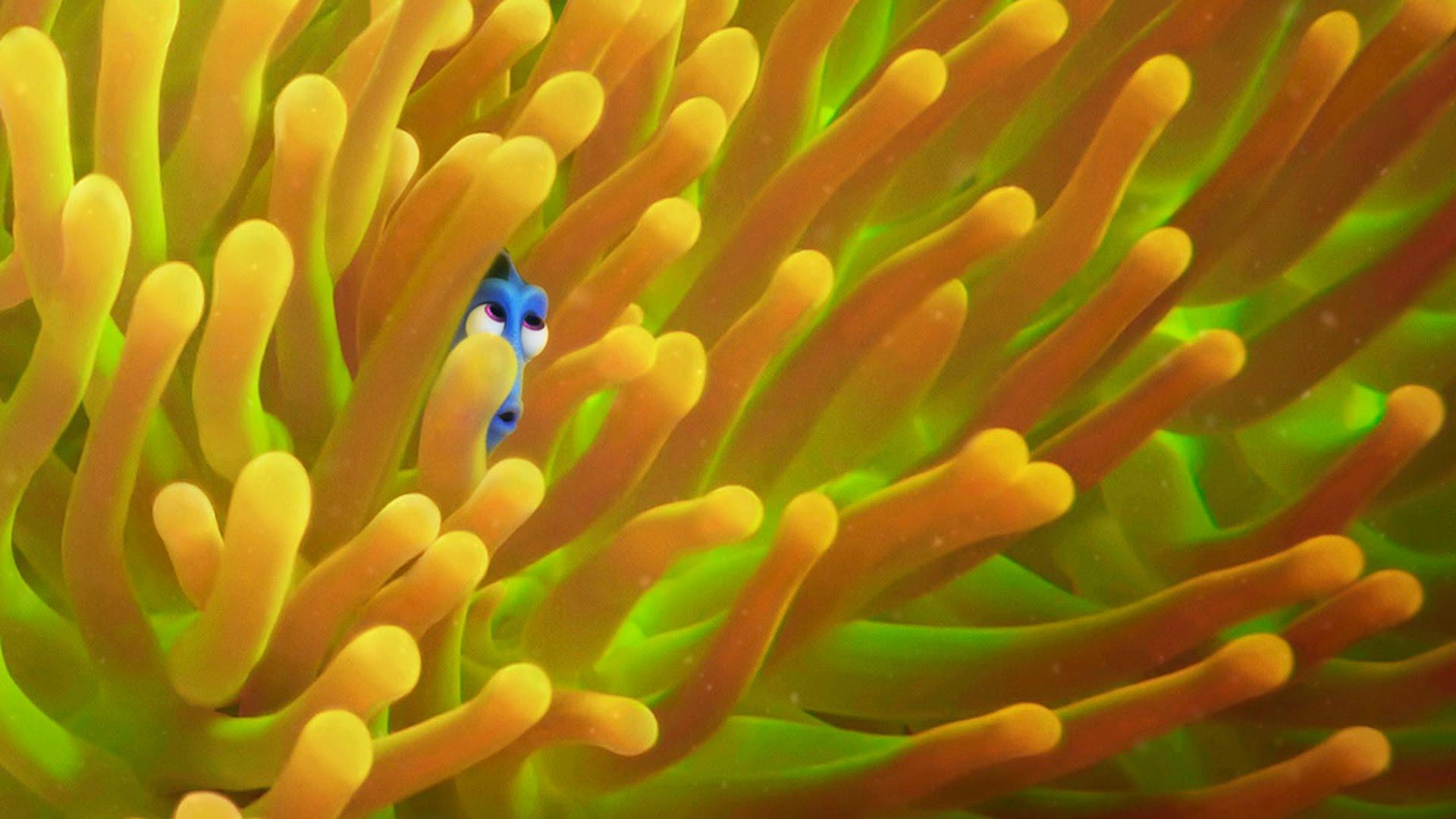 The Ellen Show Releases Finding Dory Trailer