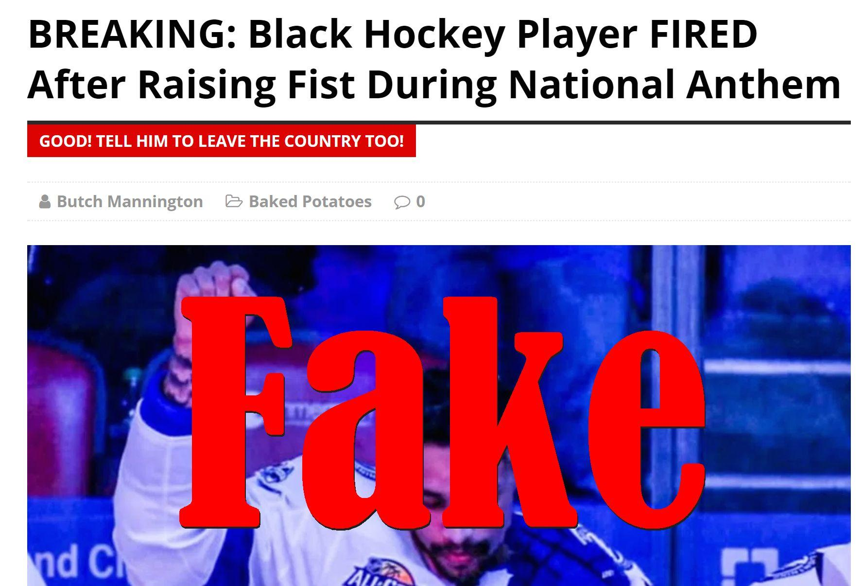 Fake News: Black Hockey Player NOT Fired After Raising Fist During National Anthem