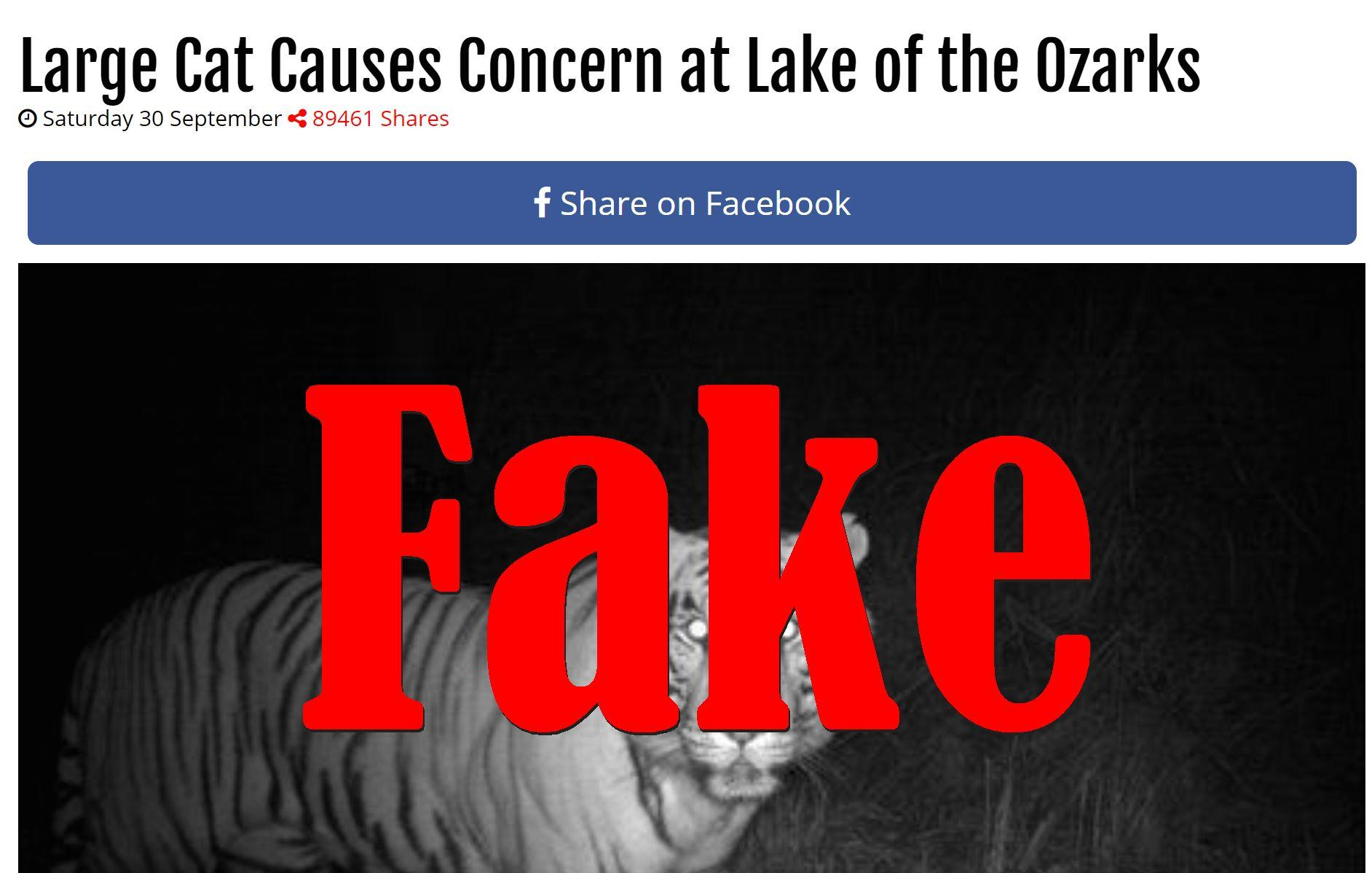 Fake News: Large Cat Did NOT Cause Concern At Lake Of The Ozarks