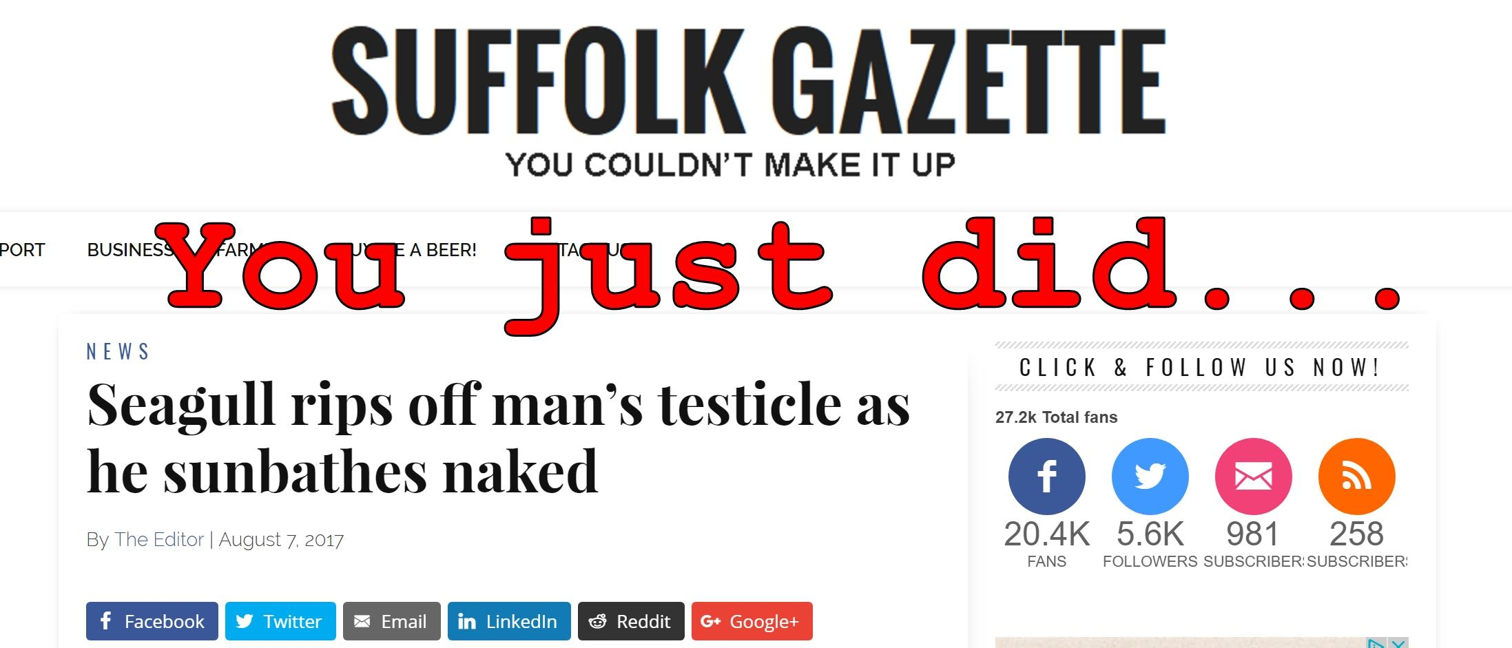 Fake News: Seagull Did NOT Rip Off Man's Testicle As He Sunbathes Naked