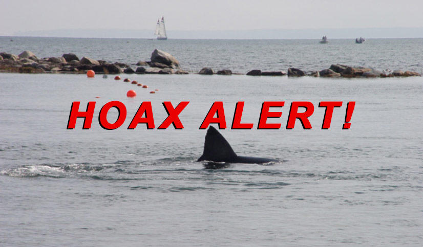 Hoax Alert: Man-Eating Shark NOT Spotted In Ohio River