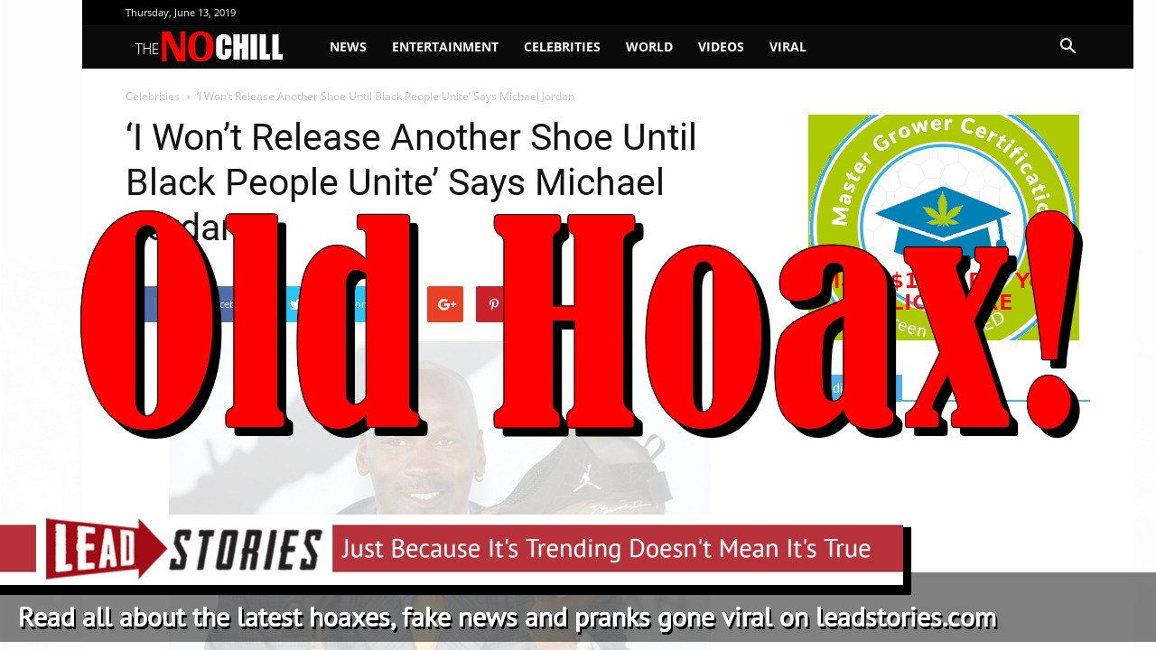 Fake News: Michael Jordan Did NOT Say 'I Won't Release Another Shoe Until Black People Unite'